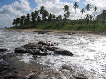 Bahia Brazil Pictures 015 Andria Lavine Photography