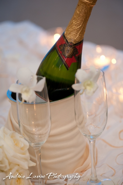 Andria Lavine Photography_Atlanta Wedding Photography_Desination Wedding_The Manor Golf Country Club - photo
