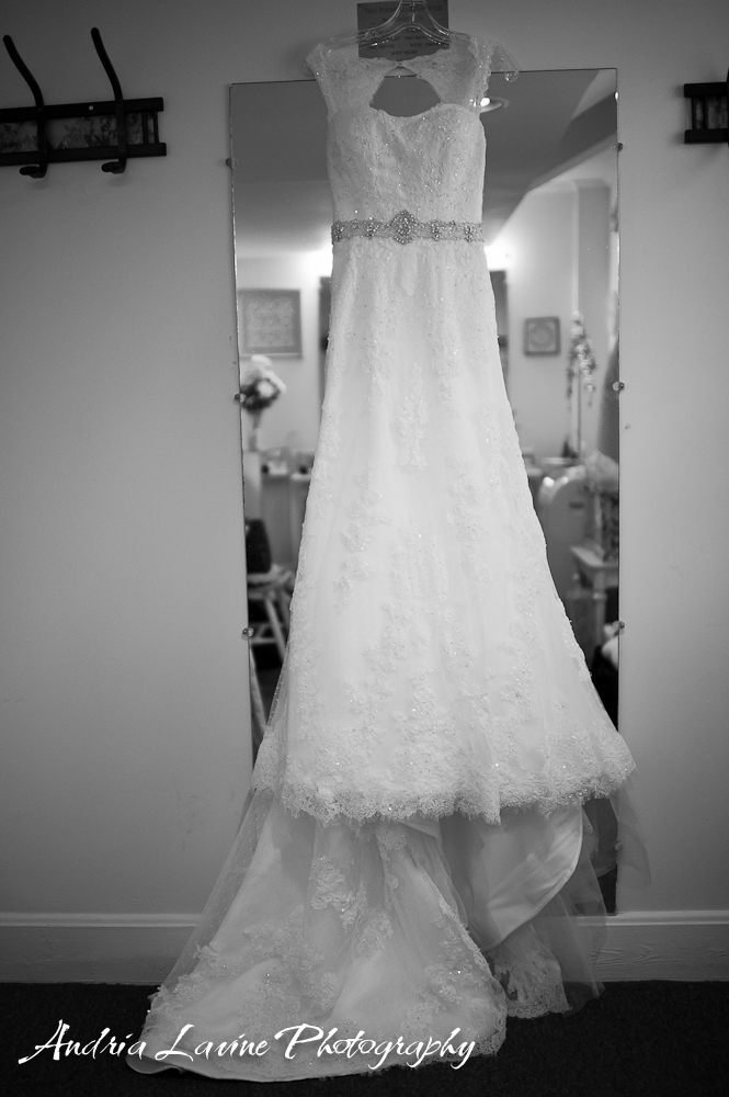 raphy_Atlanta Wedding Photography_Atlanta Wedding-Wedding Dress- photo