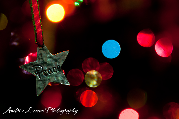 Christmas Peace-Andria Lavine Photography - photo