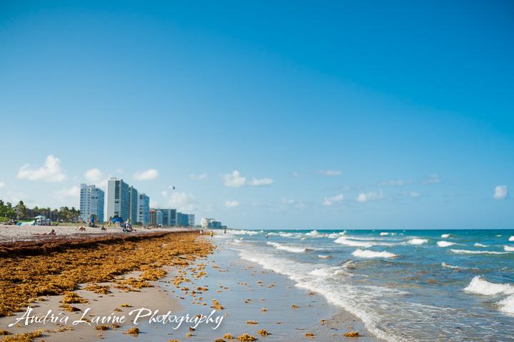 ©Andria Lavine Photography_Beach2015-4655-photo